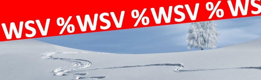 wsv_Header